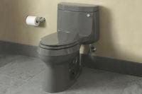 Cimarron Comfort Height 1 Piece Toilet W Cachet Quiet Close Lid In Thunder Grey